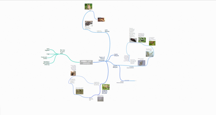 coggle-mindmap-screenshot